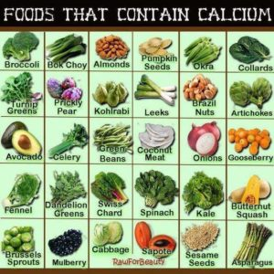 Food that are Source of Rich Calcium