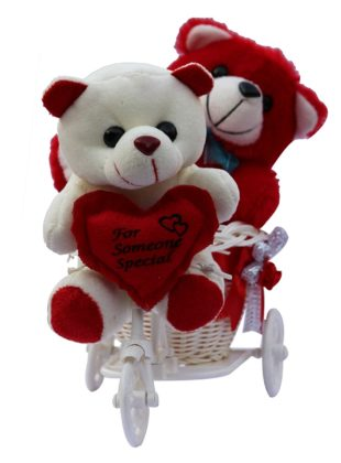 Two cute Teddy with a Tricycle Gift Set